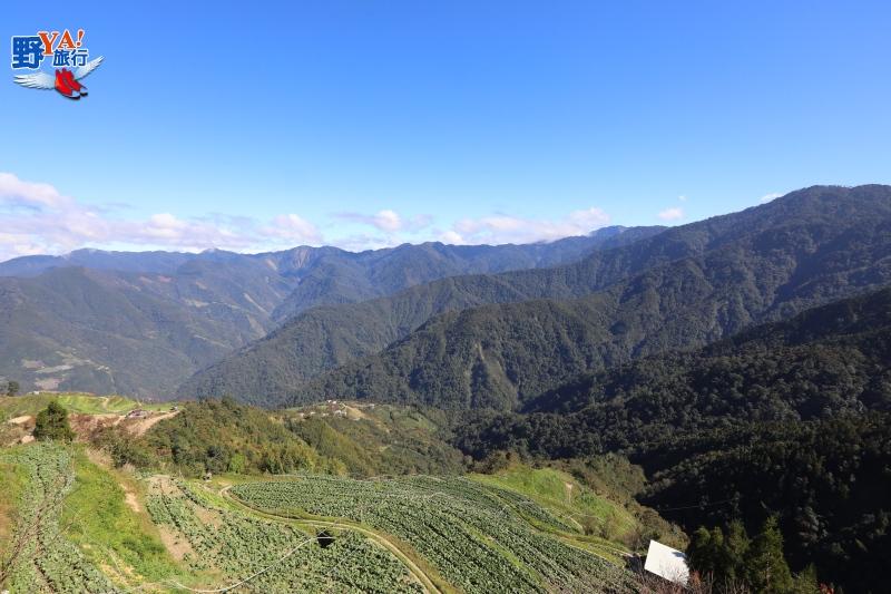 觀霧不止是觀霧,北台灣最佳週休旅遊路線 @YA 野旅行-旅行不需要理由