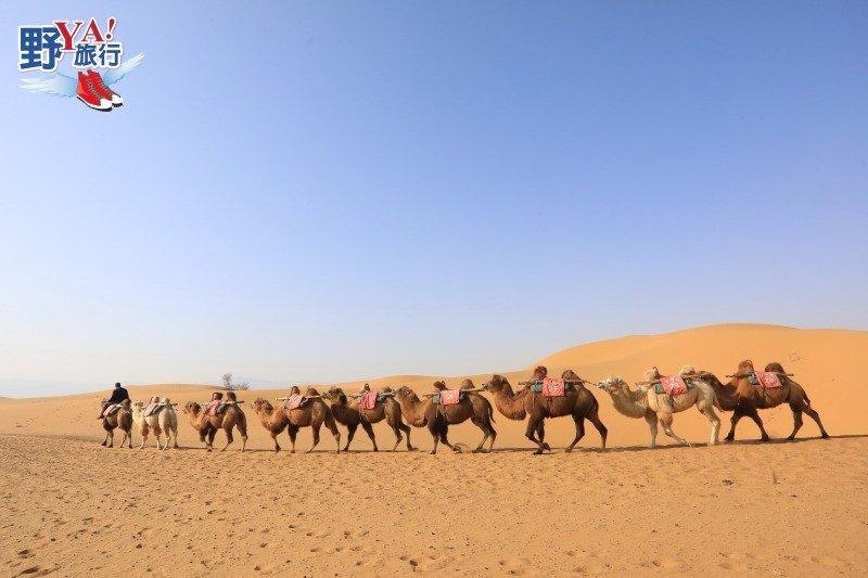 逛西部影城電影場景追星 騰格里騎駱駝感受大漠風光 @YA 野旅行-旅行不需要理由
