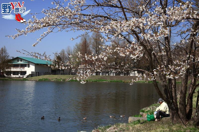 東京近郊熱門景點 充滿歐式風情的輕井澤 @YA 野旅行-旅行不需要理由