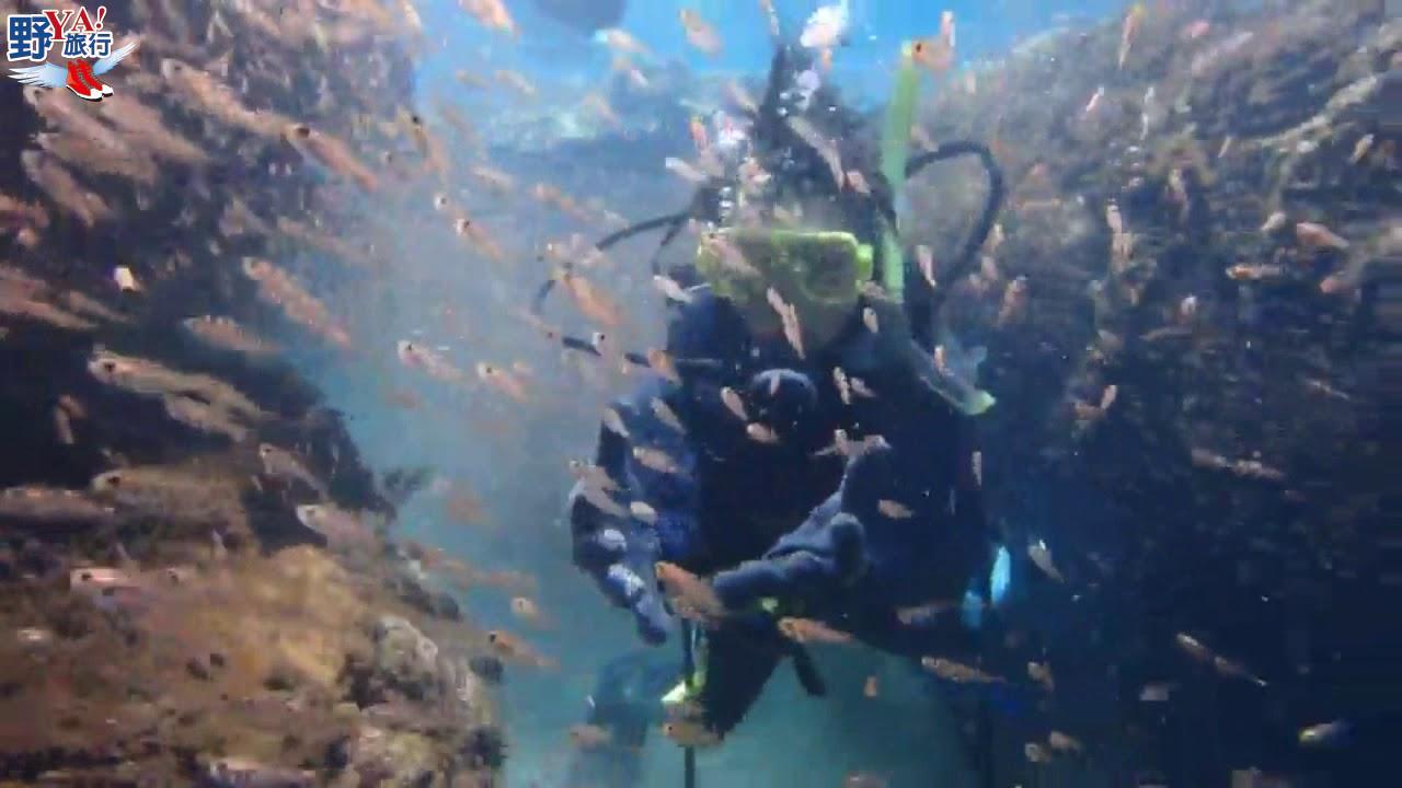 花蓮石梯坪PADI潛水訓練 體驗穿越魚牆的快感 @YA 野旅行-旅行不需要理由