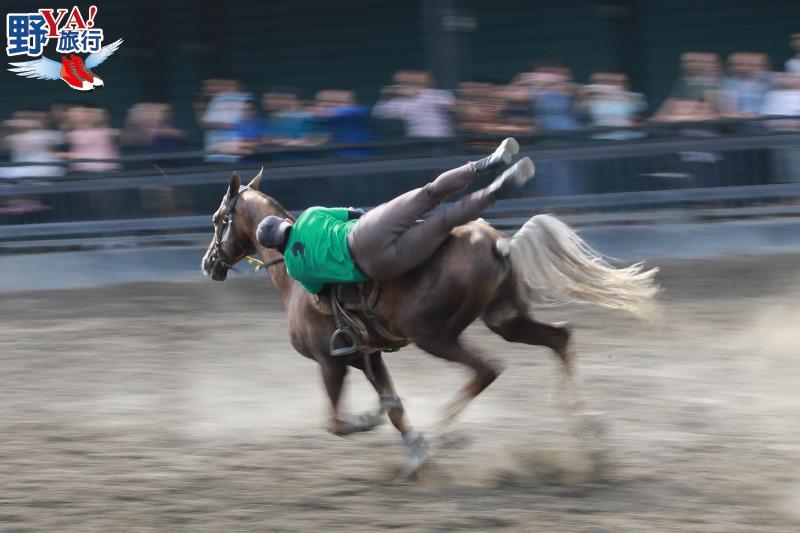 新疆 烏魯木齊 汗血寶馬基地 野馬國際商務會館 @YA 野旅行-旅行不需要理由