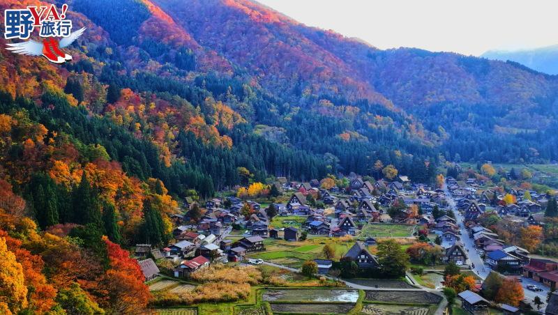 日本|北陸 白川鄉合掌村楓紅片片 無敵浪漫場景此生必訪 @YA 野旅行-旅行不需要理由