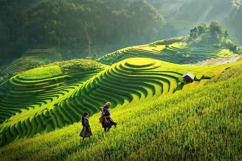 享受五星法式旅程,極致療癒秘境在越南   @YA 野旅行-旅行不需要理由