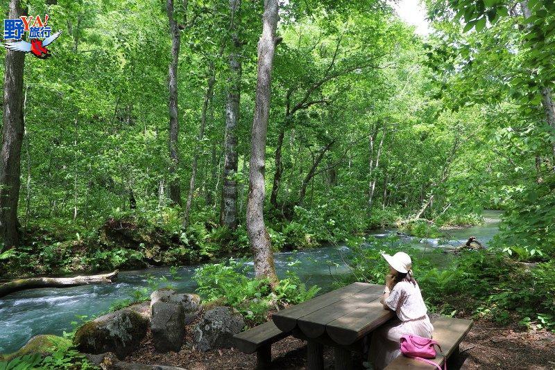 日本青森夢幻極景 青森奧入瀨溪流十和田湖散策 @YA 野旅行-旅行不需要理由