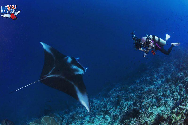 2020菲律賓線上潛水展 世界級夢幻潛水聖地 菲潛不可 @YA 野旅行-旅行不需要理由
