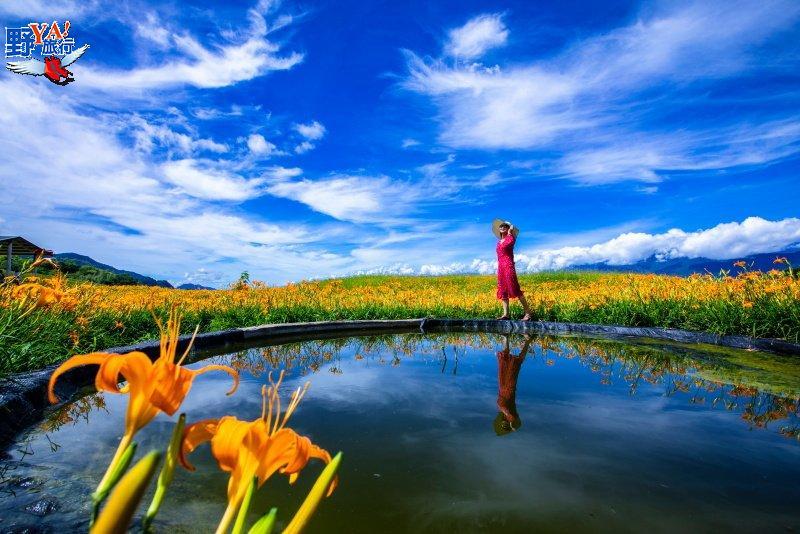 童話世界般的台灣美景-六十石山金針花開了 @YA 野旅行-旅行不需要理由