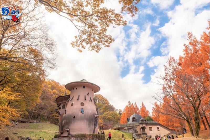 如夢似幻的童話世界登場 體驗自然擁抱賞楓愜意感受 @YA 野旅行-旅行不需要理由