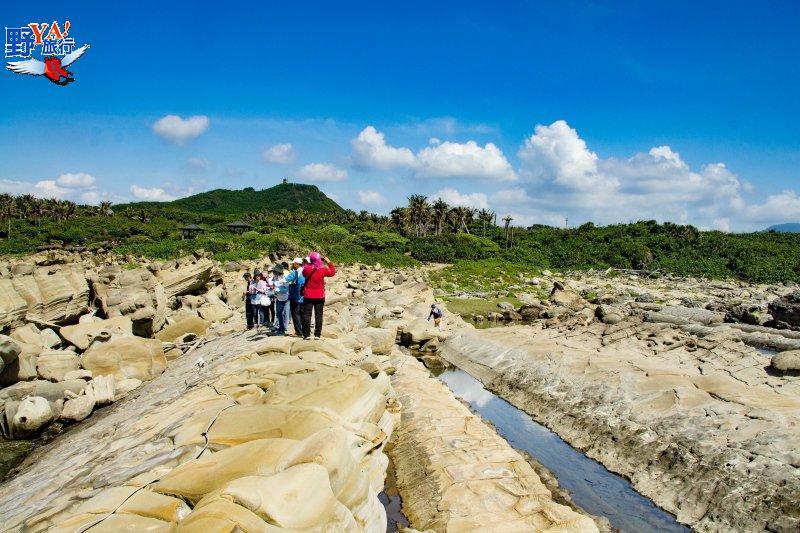 小野柳正名為富岡地質公園 結合東海岸人文推觀光 @YA 野旅行-旅行不需要理由
