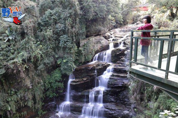 南庄原鄉東河部落森旅行 賽夏泰雅風情一次打包 @YA 野旅行-旅行不需要理由