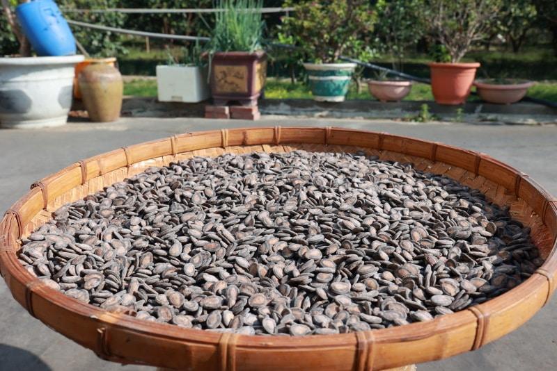 台南麻豆祥好日曬瓜子 堅持古法製作尚好ㄟ滋味 @YA 野旅行-旅行不需要理由